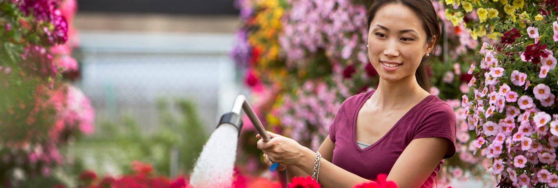 Home gardener watering plants