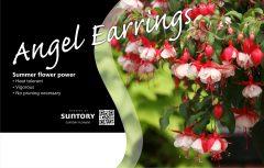 Angel Earrings Bench Card